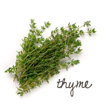 Guest Post Thyme amp Witch Hazel Facial Bar DIY  Soap Queen